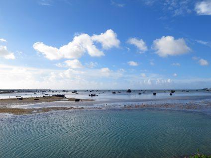 佐和田の浜!!!!
